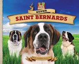 Super Saint Bernards | Mary Elizabeth Salzmann |