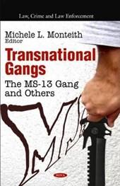 Transnational Gangs
