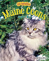 Maine Coons | Nancy White |