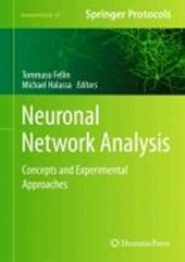 Neuronal Network Analysis