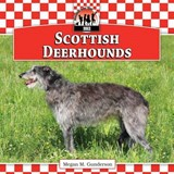 Scottish Deerhounds | Megan M. Gunderson |