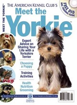 Meet the Yorkie | auteur onbekend |