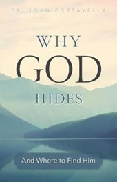 Discovering the Hidden God | John Portavella |