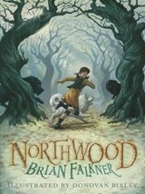Northwood | Brian Falkner |
