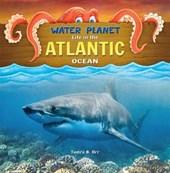 Life in the Atlantic Ocean