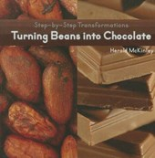 Turning Beans Into Chocolate