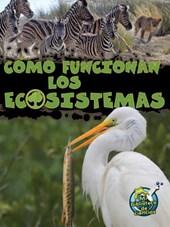 Como Funcionan Los Ecosistemas (How Ecosystems Work)