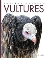 Vultures | Kate Riggs |