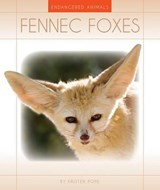 Fennec Foxes | Kristen Pope |