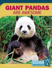Giant Pandas Are Awesome