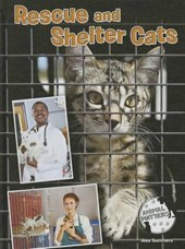 Rescue and Shelter Cats | Alex Summers |