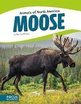 Moose | Christy Mihaly |