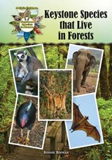 Keystone Species That Live in Forests | Bonnie Hinman |