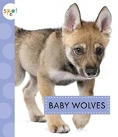 Baby Wolves | K. C. Kelley |