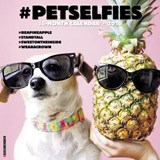 #Petselfies 2018 Wall Calendar | Willow Creek Press |