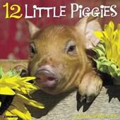 12 Little Piggies 2018 Wall Calendar