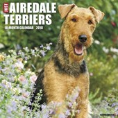 Just Airedale Terriers 2018 Wall Calendar (Dog Breed Calenda