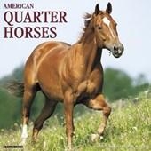 American Quarter Horses 2018 Calendar