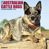 Just Australian Cattle Dogs 2018 Calendar