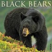 Black Bears 2018 Calendar
