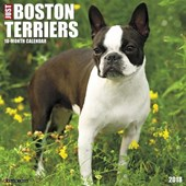 Just Boston Terriers 2018 Wall Calendar (Dog Breed Calendar)