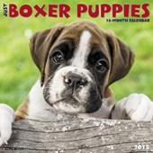 Just Boxer Puppies 2018 Wall Calendar (Dog Breed Calendar)