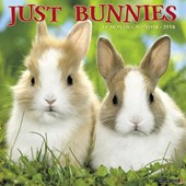 Just Bunnies 2018 Wall Calendar | Willow Creek Press |