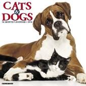 Cats & Dogs 2018 Wall Calendar