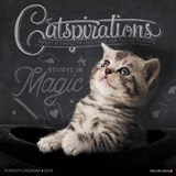 Catspirations 2018 Wall Calendar | Willow Creek Press |