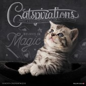 Catspirations 2018 Wall Calendar