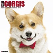 Just Corgis 2018 Wall Calendar (Dog Breed Calendar)