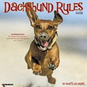 Just Dachshund Rules 2018 Wall Calendar (Dog Breed Calendar) | Willow Creek Press |