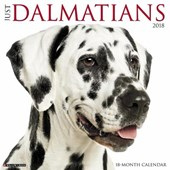 Just Dalmatians 2018 Wall Calendar (Dog Breed Calendar)