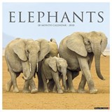 Elephants 2018 Calendar | Willow Creek Press |