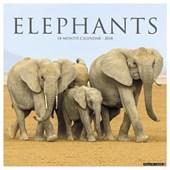 Elephants 2018 Calendar