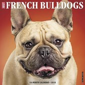 Just French Bulldogs 2018 Wall Calendar (Dog Breed Calendar)