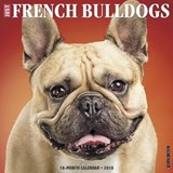 Just French Bulldogs 2018 Wall Calendar (Dog Breed Calendar) | Willow Creek Press |