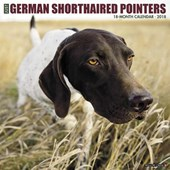 Just German Shorthaired Pointers 2018 Wall Calendar (Dog Breed Calendar) | Willow Creek Press |