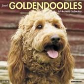 Just Goldendoodles 2018 Calendar