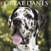 Just Great Danes 2018 Calendar