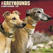 Just Greyhounds 2018 Wall Calendar (Dog Breed Calendar)