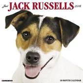 Just Jack Russells 2018 Wall Calendar (Dog Breed Calendar)