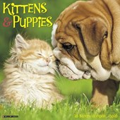 Kittens & Puppies 2018 Wall Calendar