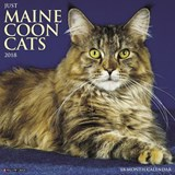 Just Maine Coon Cats 2018 Calendar | Willow Creek Press |