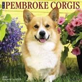 Just Pembroke Corgis 2018 Calendar