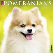 Just Pomeranians 2018 Wall Calendar (Dog Breed Calendar)