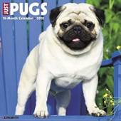 Just Pugs 2018 Wall Calendar (Dog Breed Calendar)