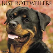 Just Rottweilers 2018 Wall Calendar (Dog Breed Calendar)