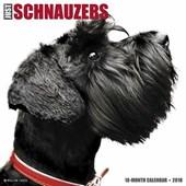 Just Schnauzers 2018 Calendar