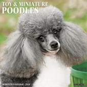 Just Toy & Miniature Poodles 2018 Wall Calendar (Dog Breed Calendar)